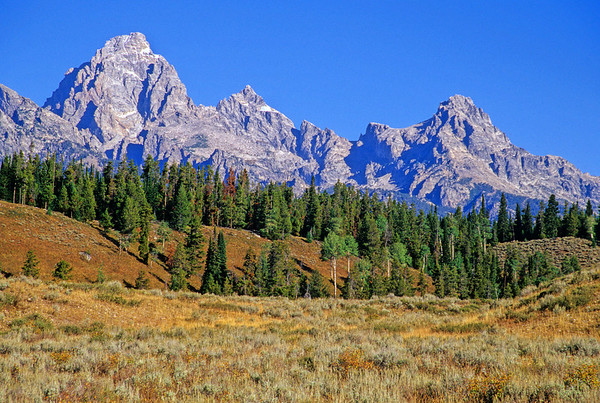 Grand Teton, Mount Owen and Teewinot from the Moose Wilson Road