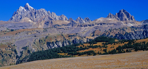 Grand Teton (left) and Buck Mountain (right) from across Death Canyon