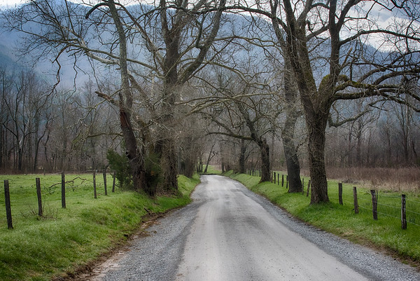 Sparks Lane, Cades Cove, Tennessee