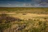 Little Bighorn Battlefield National Monument Montana