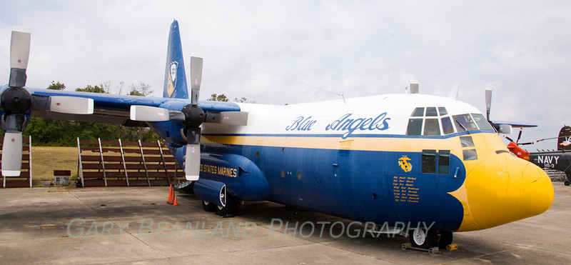 _MG_3753 Fat Albert