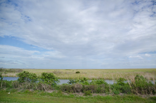 Driving through the Everglades. A visit to the Big Cypress Reservation