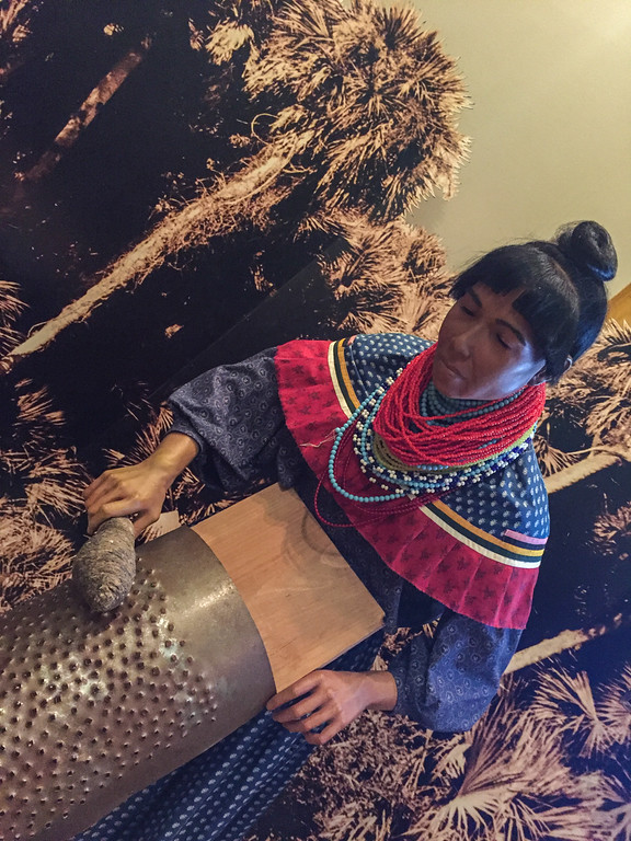 A Seminole woman grinds flour by hand. Traditional dance of the Seminole Tribe of Florida. The Ah-Tah-Thi-Ki Museum, on the Big Cypress Reservation