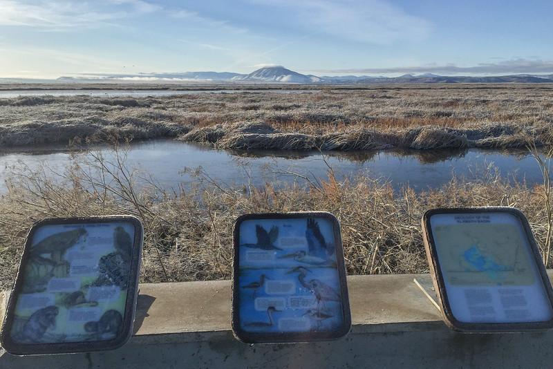 Sunny day in Lower Klamath National Wildlife Refuge
