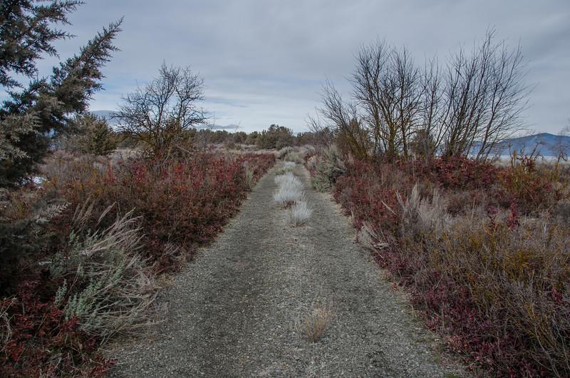 The Skillet Handle hiking trail, near Running Y Ranch in Klamath Falls, OR