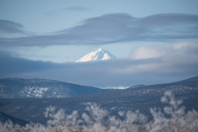 The view of Mount Shasta from Lower Klamath National Wildlife Refuge