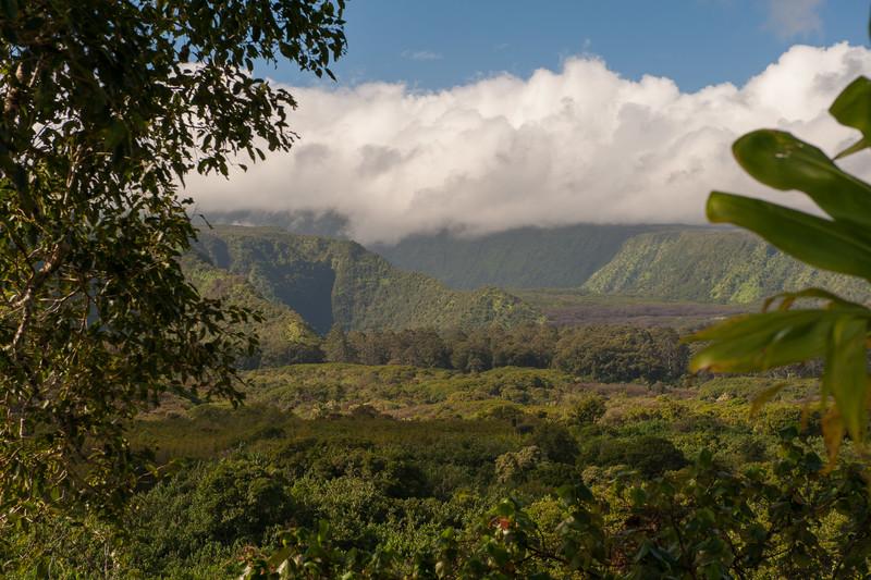 Misty mountain views on the Road to Hana tour, Maui