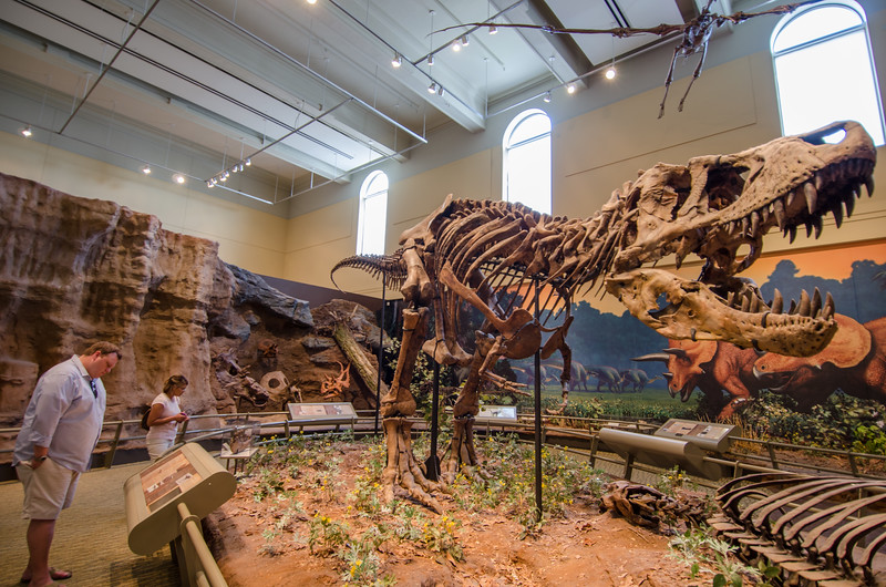 World Class Dinosaur Exhibit at the Carnegie Museum of Natural History