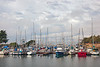 Moss Landing Harbor ~ 10-10-2012