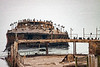 Sea Cliff State Beach - Cement Boat - 10-12