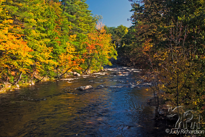 Swift River with spectacular Fall foliage outside Conway, New Hampshire