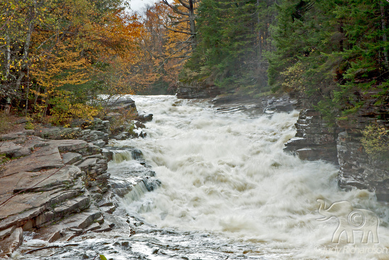 Lower Ammonoosuc Falls after a torrential downpour of flooding waters in stream outside Franconia, NH