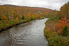Saco River showing Fall colors