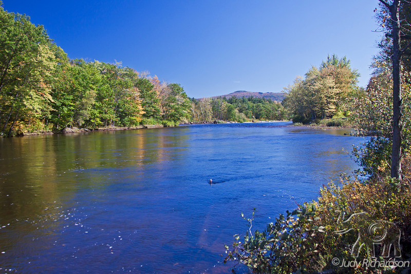 Saco River in White Mountains of New Hampshire