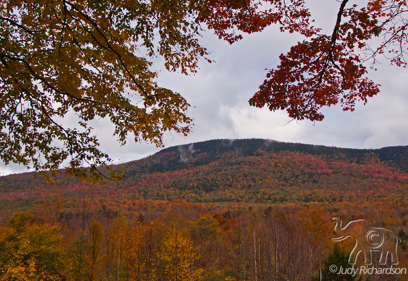Hills of brilliant Fall foliage in White Mountains of New Hampshire