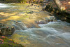 Golden Glow of Fall foliage in The Basin stream in Franconia Notch State Park