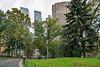 Path & Buildings around Central Park