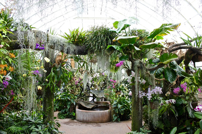 the Orchid Range at Duke Farms in Somerset County, New Jersey