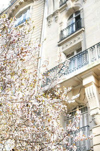 #ParisianLife