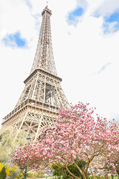 #ParisinSpring