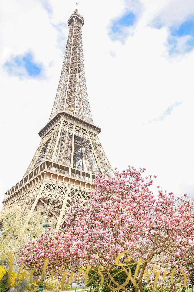 #ParisinSpring