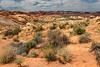 The Painted Desert (#0704)