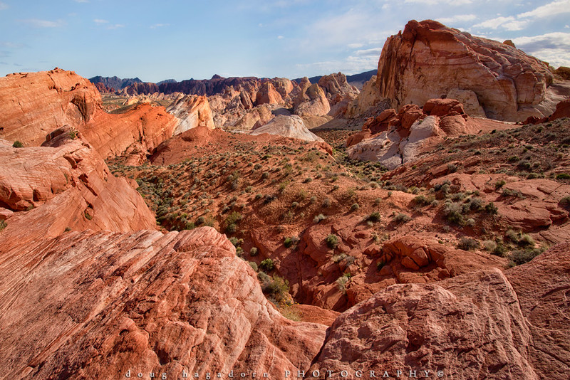 Valley of Fire: A Pallet of Reds (#0392)