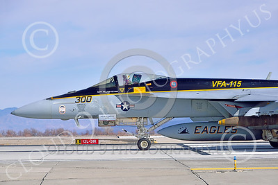 Boeing F-18E-USN 00223 Close up nose of a Boeing F-18E Super Hornet USN 166859 VFA-115 EAGLES commanding officer's airplane USS George Washington NF code on runway for take-off at NAS Fallon 2-2015 military airplane picture by Peter J Mancus