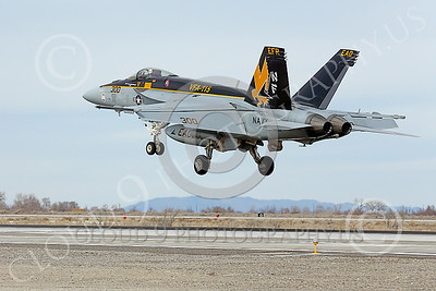 Boeing F-18E-USN 00194 A Boeing F-18E Super Hornet USN 166859 VFA-115 EAGLES commanding officer's airplane USS George Washington NF code lands at NAS Fallon 2-2015 military airplane picture by Peter J Mancus