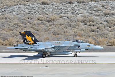 F-18E-USN-VFA-115 0003 A taxing Boeing F-18E Super Hornet USN jet fighter VFA-115 EAGLES commanding officer's airplane USS Ronal Reagan NAS Fallon 3-2017 military airplane picture by Peter J  Mancus     DONEwt