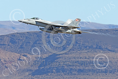 Boeing F-18E-USN 00156 A flying Boeing F-18E Super Hornets USN VFA-151 VIGILANTES 1-2015 military airplane picture by Peter J Mancus