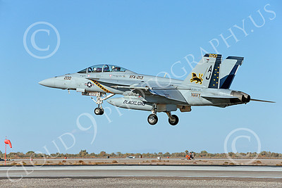 Boeing F-18F-USN 00242 A colorful Boeing F-18F Super Hornet USN 166663 VFA-213 BLACK LIONS USS George H W Bush AJ code lands at NAS Fallon 10-2013 military airplane picture by Peter J Mancus