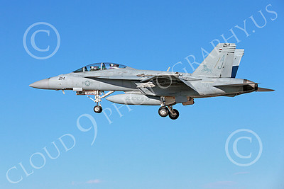 Boeing F-18F-USN 00096 A landing Boeing F-18F Super Hornet jet fighter USN VFA-213 BLACK LIONS USS George H W Bush 10-2013 military airplane picture by Peter J Mancus