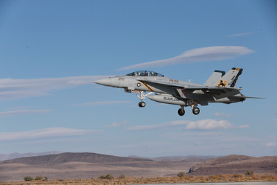 Boeing F-18F-USN 00094 A colorful Boeing F-18F Super Hornet USN 166776 VFA-213 BLACK LIONS USS George H W Bush AJ code lands at NAS Fallon 10-2013 military airplane picture by Peter J Mancus