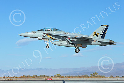 Boeing F-18F-USN 00184 A colorful Boeing F-18F Super Hornet USN 166663 VFA-213 BLACK LIONS USS George H W Bush AJ code lands at NAS Fallon 10-2013 military airplane picture by Peter J Mancus
