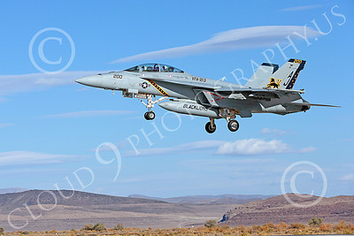 Boeing F-18F-USN 00094 A colorful Boeing F-18F Super Hornet USN 166663 VFA-213 BLACK LIONS USS George H W Bush AJ code lands at NAS Fallon 10-2013 military airplane picture by Peter J Mancus