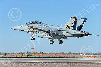 Boeing F-18F-USN 00180 A colorful Boeing F-18F Super Hornet USN 166663 VFA-213 BLACK LIONS USS George H W Bush AJ code lands at NAS Fallon 10-2013 military airplane picture by Peter J Mancus