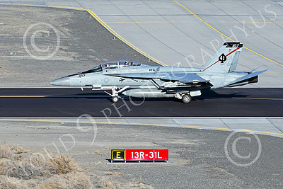 Boeing F-18F-USN 00249 A Boeing F-18F Super Hornet jet fighter US Navy VFA-41 BLACK ACES CAG rolls out after landing at NAS Fallon 1-2015 military airplane picture by Peter J Mancus