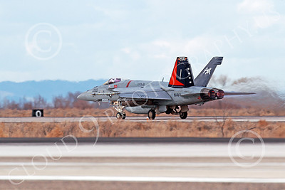 Boeing F-18C-USN 00199 A Boeing F-18C Hornet USN 166830 VFA-81 SUNLINERS USS Carl Vinson takes off at NAS Fallon 3-2013 airplane picture by Peter J Mancus