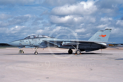 F-14USN 00915 A static Grumman F-14 Tomcat USN 161866 with combined VF-101 GRIM REAPERS and VF-114 AARDVARKS markings NAS Oceana 10-1995, by Thomas Cross