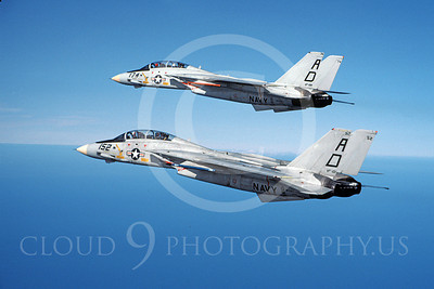 F-14USN 00904 Two flying Grumman F-14 Tomcats USN 161281 VF-101 GRIM REAPERS, by Robert L Lawson