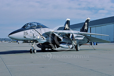 F-14USN 01001 A static Grumman F-14 Tomcat USN 161417 VF-103 JOLLY ROGERS USS Dwight D Eisenhower NAS Oceana 1-1997, by Andrew Collins