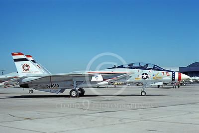 F-14USN 01085 A static Grumman F-14 Tomcat USN 159616 VF-124 GUNFIGHTERS NAS Miramar 1-1976 BICENTENNIAL, by Michael Grove, Sr