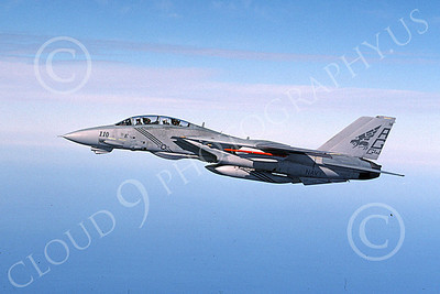 F-14USN 00068 A flying USN Grumman F-14 Tomcat VF-143 PUKIN DOGS 1-2004, by Mitch Powell