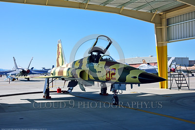 "F-5USN-VFC-13 0013 A static under an opened hangar Northrop F-5E Freedom Fighter USN 761536 VFC-13 SAINTS jet fighter in ""Banana"" livery at NAS Fallon 4-2016 military airplane picture by Peter J  Mancus"