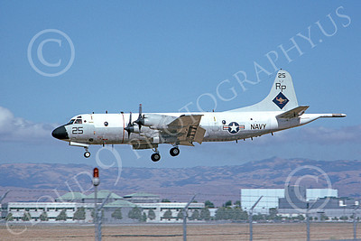 P-3USN 00186 A landing Lockheed P-3 Orion USN VP-31 BLACK LIGHTNINGS military airplane picture by Michael Grove, Sr