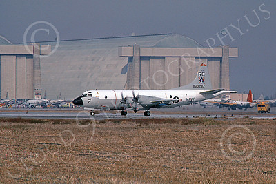 P-3USN 00087 A taxing Lockheed P-3 Orion USN 160287 VP-46 GRAY KNIGHTS NAS Moffett 12-1978 military airplane picture by Michael Grove, Sr