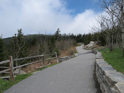 Tennessee, Clingmans Dome - Apr. 28, 2011