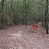 Quiet setting in the woods adjacent to the park.