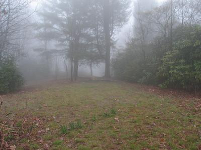 South Carolina, Sassafras Mtn - Apr. 19, 2008